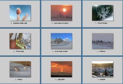Galeria przyrodnicza: Zima 2012 - Gmina Woźniki